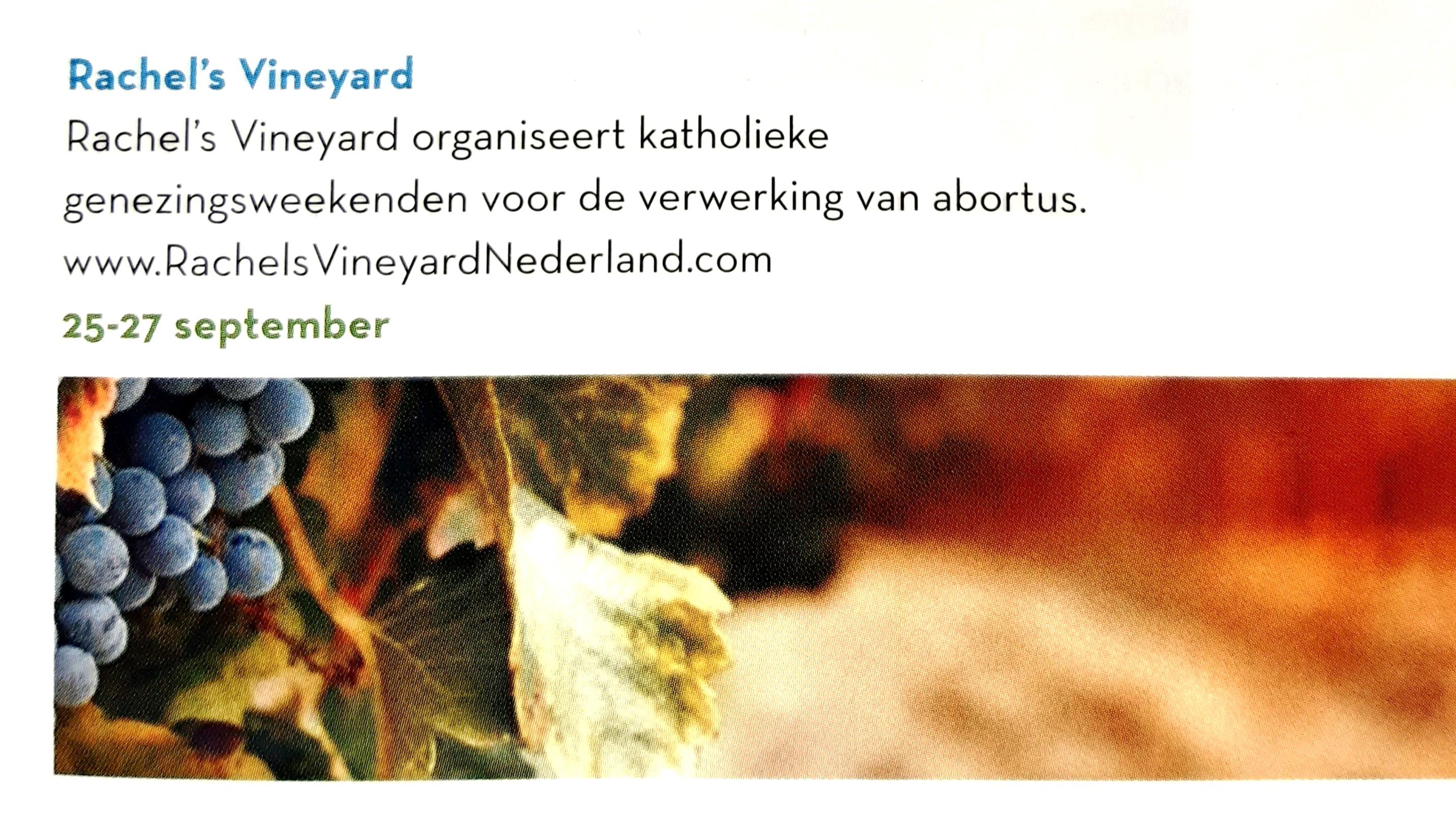 PR Rachels Vineyard